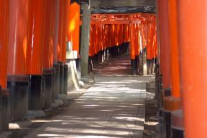 Fushimi Inari-taisha, 2007